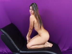 PERRACAS COLOMBIANAS 431-221-568-642-8307279 dir3x.com
